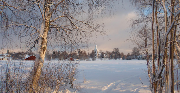 A winter image in which ski tracks can be seen coming out of a birch forest and crossing a field towards a small village in the background.
