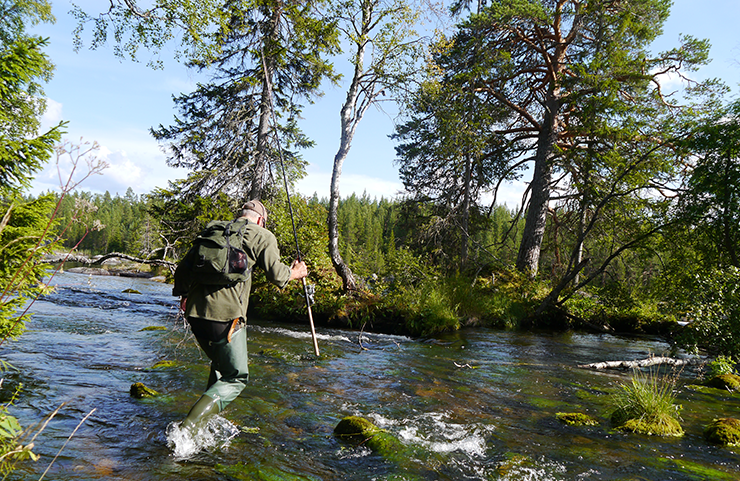 A man in outdoor wear, carrying a fishing rod, crosses a small stream in the woods.