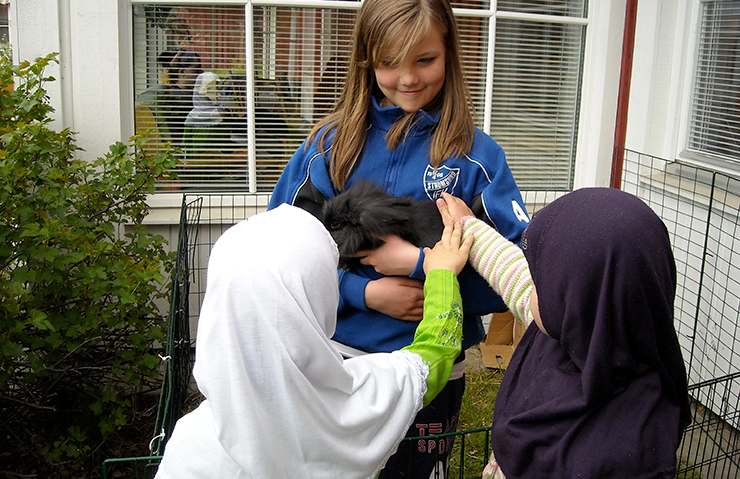 A girl from Strömsunds IFK shows two girls wearing hijabs a black long haired rabbit. The girls are stroking the rabbit.