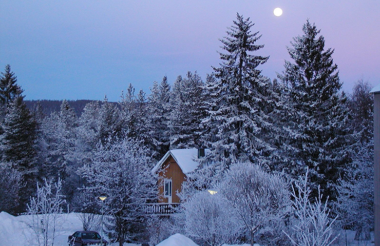 A yellow house in a snow-covered forest landscape. Moonlight illuminates the snow on the ground.