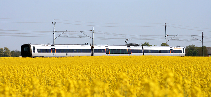 A commuter train is passing a yellow field of rapeseed. It is summer and the sky is bright blue.