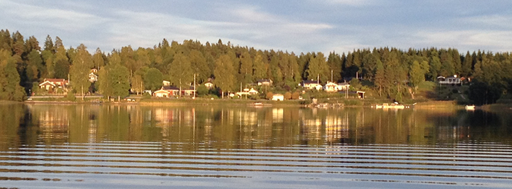 View from the lake towards houses and woods in Svenljunga.